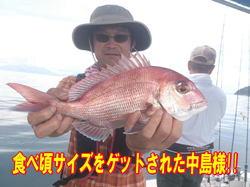 blog-20140827-ayumimaru-madai31.jpg