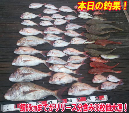blog-20140827-ayumimaru-madai34.jpg