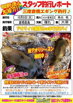 blog-20141008-kashima-aori.jpg