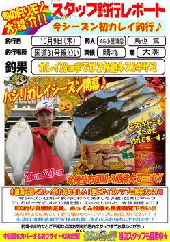 blog-20141009-kokudou31-karei2.jpg