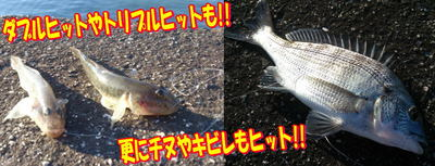 blog-20141015-senogawa-haze1.jpg