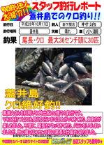 blog-20141017-shinshimo-murati.jpg