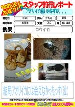 blog-20141022-tsushima-sinnwasigesu.jpg