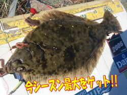 blog-20141119-R31gou-karei1.jpg