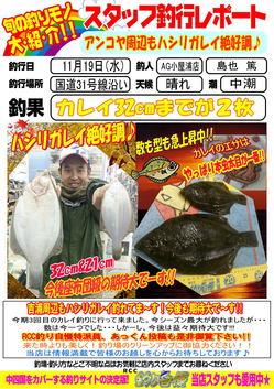 blog-20141119-R31gou-karei2.jpg