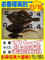 okyakusama-20141118-koyaura-karei01.jpg