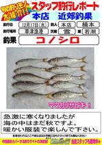 blog-2014 12 17-honten-konosiro.jpg