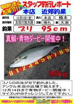 blog-2014 12 5-nonten-buri.jpg