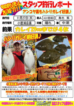 blog-20141127-koyaura-karei2.jpg