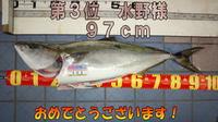 blog-20141214-honten-3mizuno.jpg