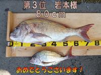 blog-20141214-honten-madai3iwamoto.jpg