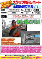 blog-20141216-shinshimo-ikeda.jpg