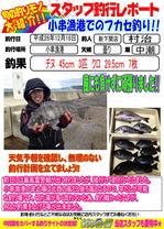 blog-20141219-shinshimo-murati.jpg