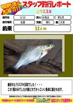 blog-20141222-tsushima-asahina.jpg