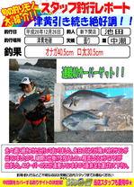 blog-20141226-shinshimo-ikeda.jpg