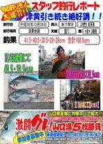 news-20141228-sinsimo-da-bi-.jpg