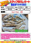 blog-20150104-shinshimo-hata.jpg