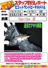 blog-20150105-shinshimo-hata.jpg