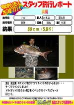 blog-20150111-tsushima-asahina.jpg