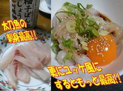 blog-20150113-kamagarioki-tachiuo19.jpg