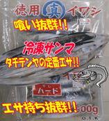 blog-20150113-kamagarioki-tachiuo21.jpg