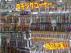 blog-20150113-kamagarioki-tachiuo22.jpg