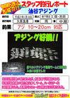 blog-20150118-shinshimo-hata.jpg