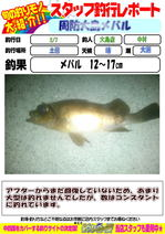 blog-20150208-ooshima-01.jpg