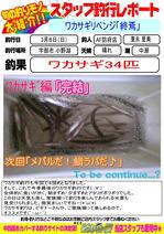 blog-20150308-houhu-wakasagi[終焉].jpg