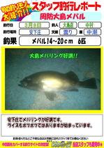 blog-20150308-ooshima-mebaru.jpg