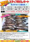blog-20150320-houhu-mebaru.jpgのサムネイル画像