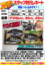 blog-choufu-20150304-hayashi.jpg