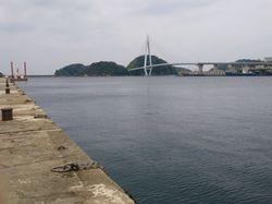 4.16aogawa.jpg