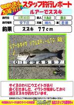 blog-20150330-ooshima-01.jpg