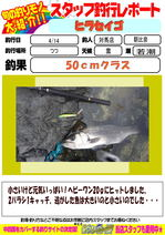 blog-20150415-tushima-asahina.jpg