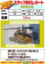 blog-20150428-tsushima-asahina.jpg