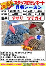 blog-honten0419-asari.jpg