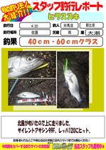 blog-tsushima-20150420-asahina.jpg