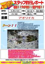 blog-20150503-kikugawa-kabe.jpg