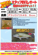 blog-20150515-kikugawa-okajima.jpg