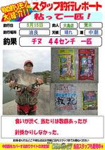blog-20150516-ooshima-02.jpg