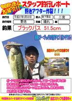 blog-20150522-shinshimo-hata.jpg