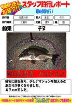 news-20150529-honten-ogawa-tining.jpg