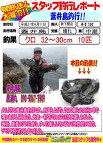 blog-20150617shinshimo-ikeda.jpg