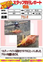 blog-20150708-tsushima-asahina.jpg