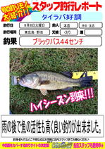 blog-20150909-honten-okinaka  BASS.jpg