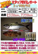 blog-2015092-sinsimo-kito.jpg