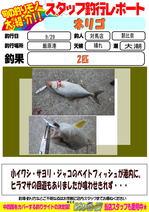 blog-20150930-tsushima-asahina.jpg