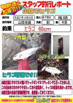 blog-20151003-sinsimo-kito.jpg