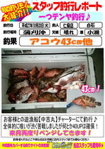 news-20151023-niho-4.jpg